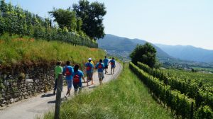 Read more about the article Endorfina a Walking Mendrisio